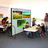 Screenflex Freestanding Room Dividers (5 Panels)